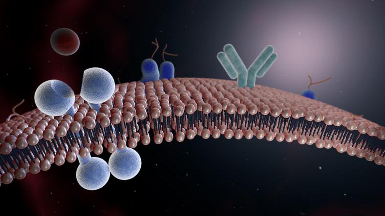 Yvonne Rosenfeldt-Watanabe Mitochondriale Medizin