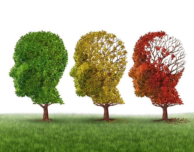 """Alzheimer – """"Wenn unsere Persönlichkeit verloren geht"""" eine chronische degenerative Erkrankung. Prävention mit Regenerativer Mitochondrien Medizin"""