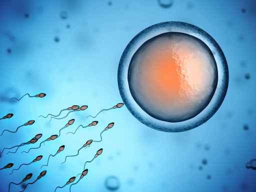 Unerfüllter Kinderwunsch- Was belastet Männer in ihrer Zeugungskraft? Mitochondrien-Medizin und Regenerative Mitochondrien-Medizin bieten den richtigen Therapieansatz.